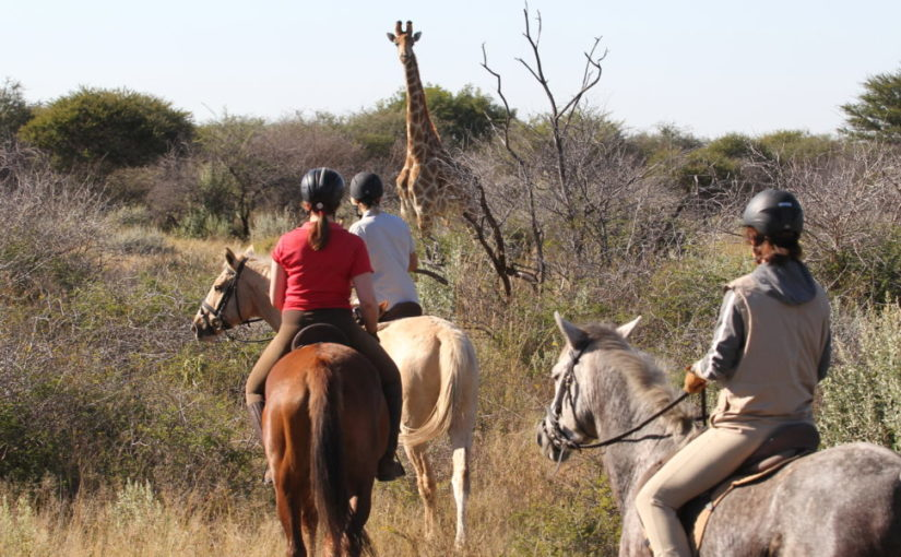 African Safari on Horseback