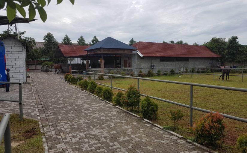 Budi Luhur University and JB Stables