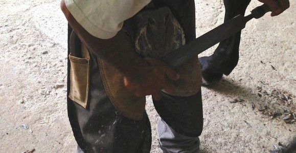 Master Farrier from Indonesia: Budi Tulodo