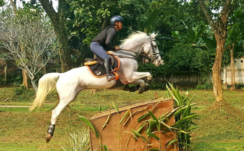 National Equestrian Championship 2018: Jendry Palandeng Leads the CCI* after Day 1 (Third Qualifier)